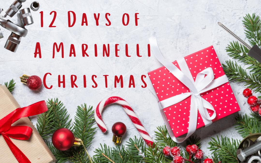 Twelve Days Of A Marinelli Christmas